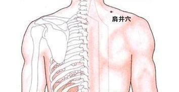 人体经络系统图 一个穴位畅通全身之气