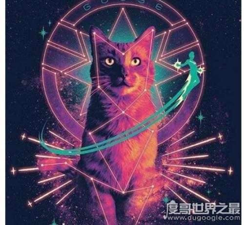 噬元兽是什么梗,它是漫威电影中可怕的生物(外形是可爱的猫)