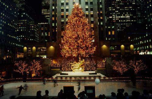 全球最美的十四大圣诞树,在绝美的艺术下度过平安夜