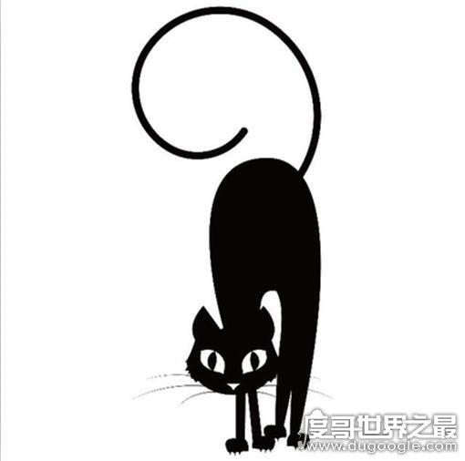 薛定谔的猫是什么意思,指量子力学中第三种混沌的叠加状态
