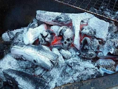 日本艺术家设计的头骨形状木炭,应该会点燃你对烧烤的热情!