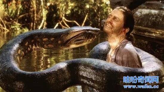 近9米水下巨蟒吃人,专家险被巨蟒生吞头部被消化
