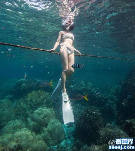 陈赫前妻许婧穿性感比基尼潜水 曲线玲珑如美人鱼