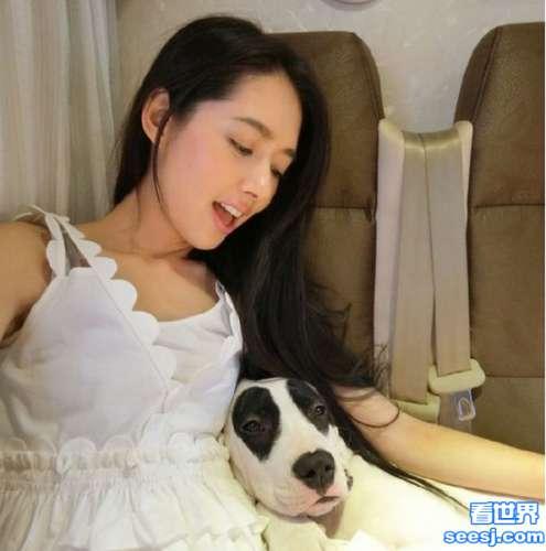 郭碧婷与爱犬自拍 好幸福的狗狗可以在美女怀里亲密接触