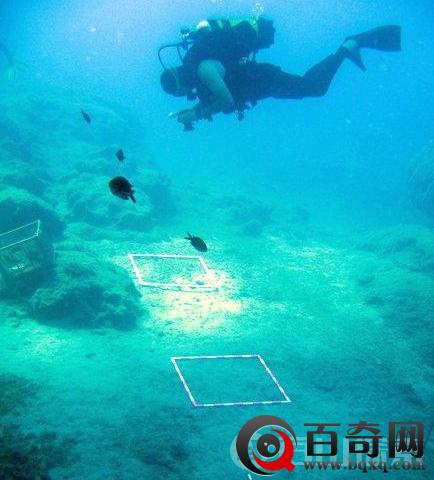 陆上考古基本完工 将往深海探索!