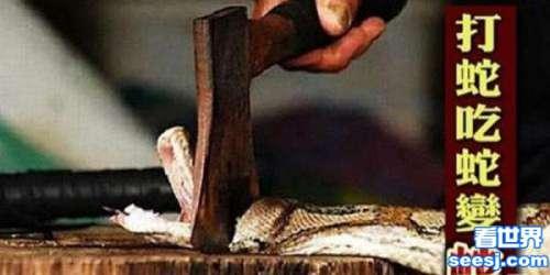 打蛇吃蛇无数变成蛇人 其实是一种罕见皮肤病