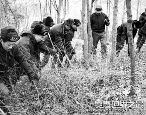 韩国大邱青蛙少年失踪案,五名少年离奇惨死(凶手至今未找到)