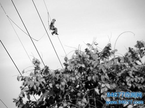 男子野外钓鱼发现高压线上悬挂白sè生物, 细看后直接选择报jǐng
