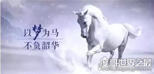 以梦为马不负昭华什么意思,珍惜时光实现梦想(出自海子诗篇)