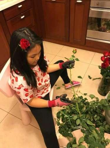 李湘晒女儿插花照王诗龄头别玫瑰表情认真可爱