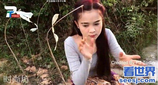 美女砍柴,藏着一条蛇 27303图片