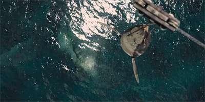 海洋里最厉害的恐龙,沧龙(干掉上龙如吃白菜)
