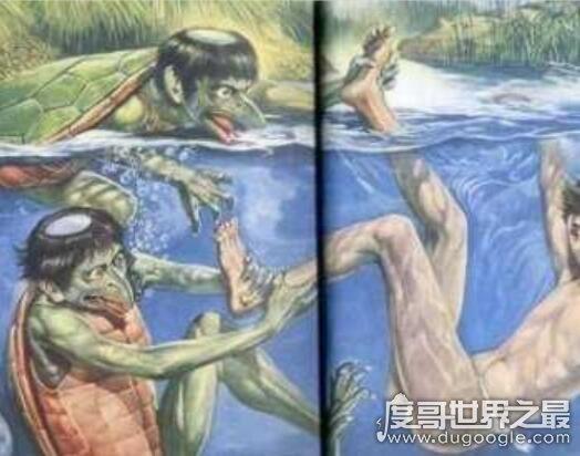 海猴子和水猴子的区别,水猴子图片看着真恐怖(内附图片)