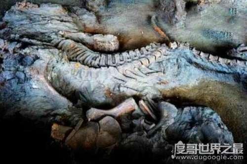 汶川地震看到龙,有人说是真龙飞天有人说龙脉死亡